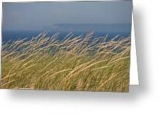 Sleeping Bear Dunes 2 Greeting Card