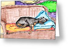 Sleeping Rottweiler Dog Greeting Card by Jera Sky