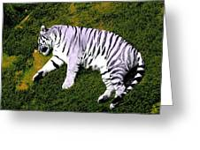 Sleepy Tiger 2 Greeting Card
