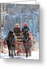 Sleigh Ride In The Frontenac Axis Greeting Card