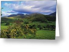Slieve Bearnagh, Mourne Mountains, Co Greeting Card