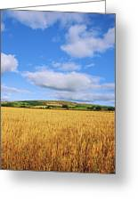 Slieveardagh Hills, Co Kilkenny Greeting Card