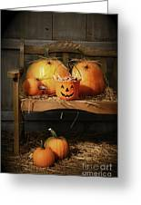 Small And Big Pumpkins On An Old Bench  Greeting Card