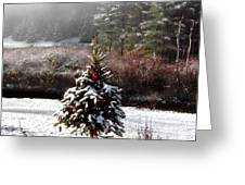 Small Christmas Tree Filtered Greeting Card