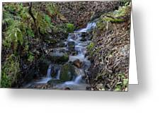 Small Creek Greeting Card