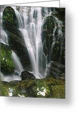 Small Waterfall Near The Milford Track Greeting Card