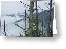 Smokey Mountain Forest No.612 Greeting Card