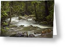 Smokey Mountain Stream No.326 Greeting Card