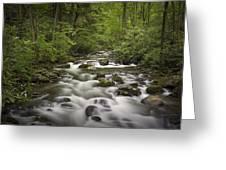 Smokey Mountain Stream No.362 Greeting Card