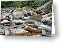 Smoky Mountain Streams Greeting Card