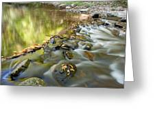 Smoky Mountain Streams Iv Greeting Card