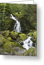 Smoky Mountain Waterfall - Mouse Creek Falls Greeting Card