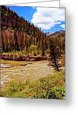 Snake River And Kayaker Greeting Card
