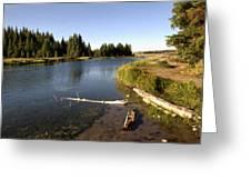 Snake River At Schwabacher Landing  Greeting Card