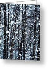 Snoball Flakes Greeting Card