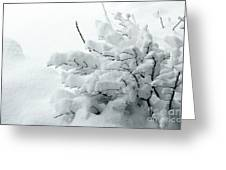 Snow Abstract 2 Greeting Card