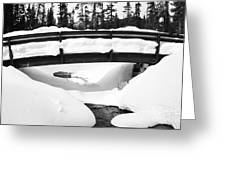 Snow Bridge In Canadian Rockies Greeting Card