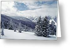 Snow Covered Pine Trees On Mountain Greeting Card