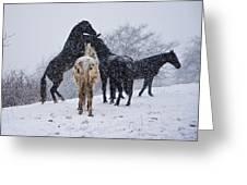 Snow Day I Greeting Card by Betsy Knapp