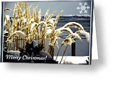 Snow Dust Christmas Card Greeting Card
