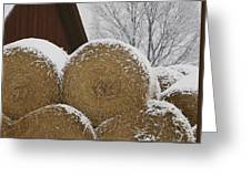 Snow Dusts Rolls Of Hay Greeting Card