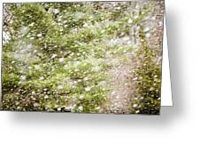 Snow Falling In Front Of Pines Greeting Card