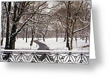 Snow In Central Park Greeting Card