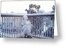Snow On Grilles Greeting Card