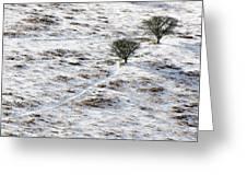Snow On Moorland Greeting Card