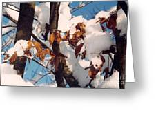 Snow On The Fall Leaves Greeting Card