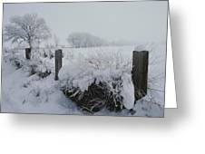 Snow, Rime Ice, And Fog Cover Greeting Card