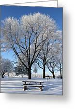 Snow Seat Greeting Card
