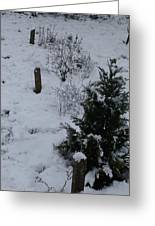 Snow With Small Tree Greeting Card
