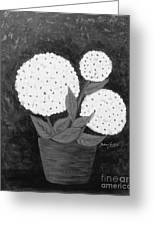 Snowball Plant B W Greeting Card