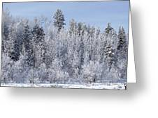 Snows Hit Again In Early Spring Greeting Card
