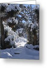 Snowscape Three Greeting Card