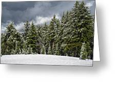 Snowstorm In The Cascades Greeting Card