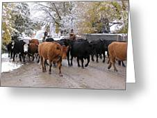 Snowy Cattle Drive Greeting Card