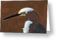 Snowy Egret Profile Painterly Greeting Card