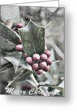 Snowy Holly Christmas Card Greeting Card