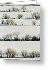 Snowy Landscape Greeting Card by Jeremy Woodhouse