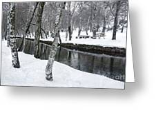 Snowy Park Greeting Card by Carlos Caetano