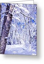 Snowy Path Greeting Card by Rob Travis