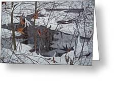 Snowy Pond Greeting Card