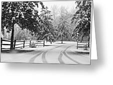 Snowy Tracks Greeting Card