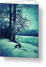 Snowy Woods By A Lake Greeting Card