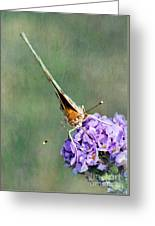 So What Butterfly Greeting Card
