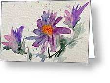 Soft Asters Greeting Card