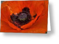 Soft Dreamy Poppy Greeting Card