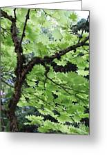 Soft Green Leaves Greeting Card